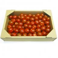 【ご家庭用】ヘタなしミニトマト(1.5kg)