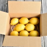 A-171 人気ローズガーデンの減農薬レモン1.5kg