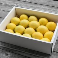 B-181 人気ローズガーデンの減農薬レモン3kg