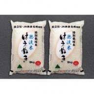 【013-016】庄内町産特別栽培米はえぬき無洗米10kg