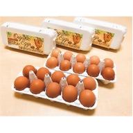 【3ヶ月お届け】オーガニック卵 30個
