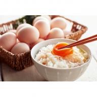 遠州森町 生で食べて欲しい烏骨鶏の卵