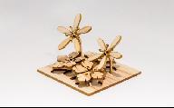 佐川町産ヒノキ使用!10×10植物模型セット(3種)