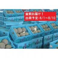 盆前 津軽産 青肉メロンご家庭用約5kg4~6玉