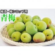 青梅(南高梅)特選大粒 2kg 和歌山県産