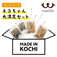 21-380.猫ちゃん大満足セット【ペットフード】