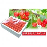 山形県産 最高級 特秀「佐藤錦」手詰L~2L500g 化粧箱