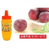 大江町産 旬のすもも(プラム)約1.5kgハチミツ500gセット