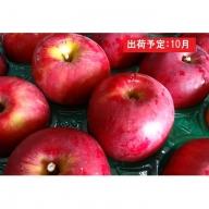 大江の恵み 紅玉約10kg家庭用 大江町産