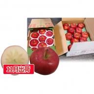 贈答用蜜入りこうとくりんご約3kg 大江町産