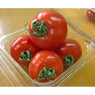 御殿場 中玉トマト シンディースイート(約1.5kg)
