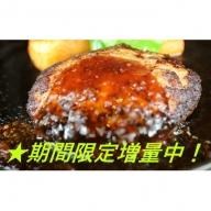 【GW・新元号企画】期間限定増量中!馬肉ハンバーグ120g×20個