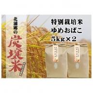 早期受付開始!!【炭壌米 ゆめおばこ】元年産 白米 5kg×2袋(合計:10kg)
