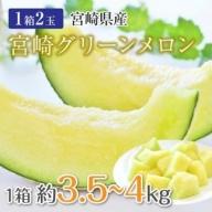 数量限定<宮崎県産 グリーンメロン 約3.5~4kg(2玉入り)【B370】