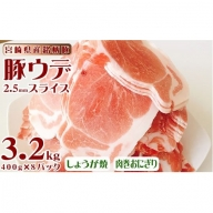 宮崎県産ブランド豚<合計3.2kg(ウデスライス 400g×8パック)【B362】