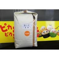 蔵王産ひとめぼれ10kg(玄米)