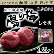 紀州南高梅 しそ梅3Lサイズ 1.2kg(塩分7%)