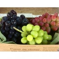 皮ごと食べられるブドウ詰合せ約4kg 6~7房