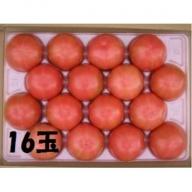 A0068 「走るトマト」の大玉トマト富丸ムーチョ 4kg ※11月初旬~7月中旬