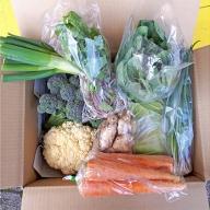 旬の佐渡 農産品BOX 春