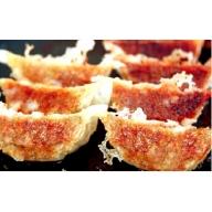 [A0211]これぞ餃子!! 九州産黒豚餃子詰合せ (福津の極み認定商品)&自家製柚子胡椒