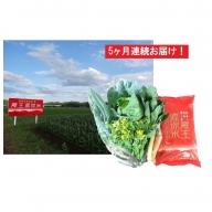 【5ヶ月連続】蔵王源流米5kg&季節の恵みセット(3~5品程度)