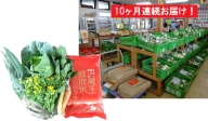 【10ヶ月連続】蔵王源流米5kg&季節の恵みセット(3~5品程度)