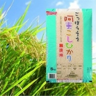 01D-032 阿東こしひかり(無洗米5kg)