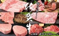 N200-5【毎月お届け!月に1度はお肉の日☆】佐賀牛 定期便 12回コース
