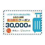 長和町 旅ゴー!クーポン(30,000点)