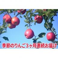 【2019年度産】季節のりんご5kg 3か月連続お届け(10~12月)
