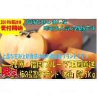 A266.九州・福岡フルーツ王国より直送.柿の最高級ブランド『太秋』約2.5kg/2019年10月~11月配送