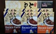 【A-405】博多とんこつ「Bacacaカレー」6食セット
