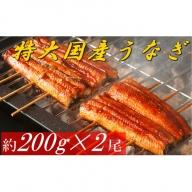 【A2-011】魚市場厳選 国産うなぎの蒲焼き 2尾