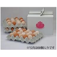 純国産鶏さくらちゃんが産んだ桜色のさくら玉子の五分咲き30個