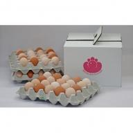 純国産鶏さくらちゃんが産んだ桜色のさくら玉子の五分咲き60個