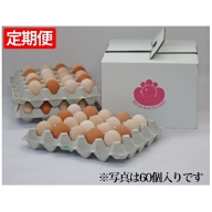 【3ヶ月連続】純国産鶏さくらちゃんが産んださくら玉子の五分咲き30個