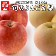 【信州須坂のフルーツ】旬のリンゴ&旬の梨 約10kg
