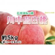 【信州須坂の桃】川中島白桃約5kg(13~18玉入り)