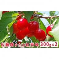 <くだものの笠井園>さくらんぼ(Lサイズ以上)300g×2