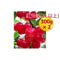 嶋田茂農園「匠」ジャンボサイズさくらんぼ【紅秀峰】300g×2