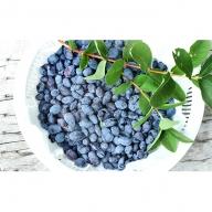 <仁木ファーム>北海道仁木町産冷凍ハスカップ約1kg