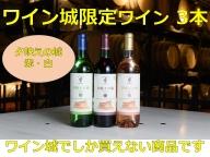 B001-1 「十勝ワイン」池田町内限定3本セット