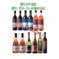 D002-2 十勝ワインバイザーおすすめバラエティー12本セット
