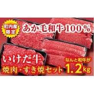C011-3 赤身が多くヘルシーで評判のあか毛和牛が1.2kg! いけだ牛焼肉・すき焼きセット