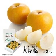 SA0034 酒田の美味しい刈屋梨 秀品 約3kg(8玉前後入)