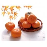 SA0150 種なし庄内柿