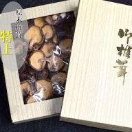 ◆農薬不使用・原木乾燥シイタケ(箱入り)【特上】
