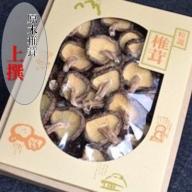 ◆農薬不使用・原木乾燥シイタケ(箱入り)【上撰】