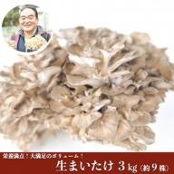 【熊本県阿蘇・南小国産】うまみ&栄養が自慢♪の生まいたけ3kg(約9株)